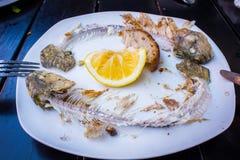 Residui del pesce fritto fotografia stock