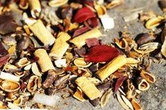 Residui dell'immondizia in foreste Fotografia Stock Libera da Diritti