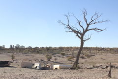 Residuo di Kalahari Immagini Stock Libere da Diritti