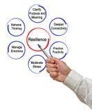 resilience fotografia de stock royalty free