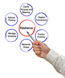 Resilience. Presenting Important components of Resilience royalty free stock photography