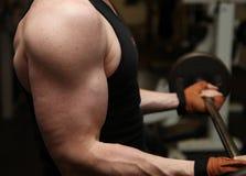 Resistenza di ginnastica del barbell di addestramento Fotografie Stock