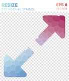 Resize full polygonal symbol. Awesome mosaic style symbol. ecstatic low poly style. Modern design. resize full icon for infographics or presentation Stock Photography