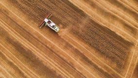 Resolução aérea 4k A ceifeira-debulhadora moderna recolhe trigo maduro deixando atrás de uma nuvem de poeira num campo de trig filme