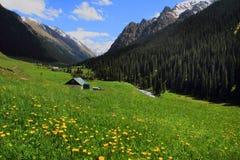 The resort Altyn Arashan on the Arashan river near Karakol city, Kyrgyzstan Royalty Free Stock Images