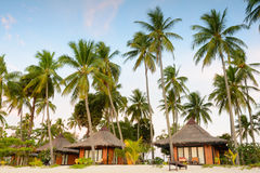 Resort around with coconut trees on the beach at island in Thai Royalty Free Stock Photo