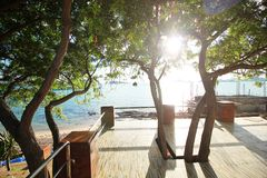 Resort balcony with trees and morning sun. Resort balcony is located on the beach Stock Photos
