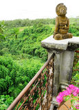 Resort balcony with valley view, bali. A photograph taken from the high hilltop balcony of a resort hotel in Bali, Indonesia, with a beautiful view of the green Stock Images