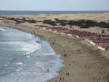 Resort beach. Aerial view of people on resort beach next to sea with rows of sun loungers and parasols Stock Image