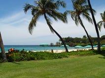 Resort Beach Area. Hawaiian Beach Resort Area with Palm Trees and Beach Umbrellas Stock Photos