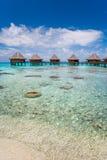 Resort bungalow luxury resort. Beautiful tropical resort overwater bungalow and turquoise warm waters in tahiti Stock Image