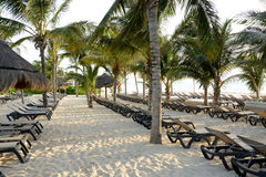 Resort Caribbean. Beach beds not occupied by tourists Stock Photography