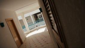 Resort in Egypt stock video
