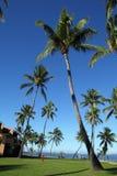 Resort in Fiji Stock Images