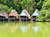 Resort in forest Stock Image