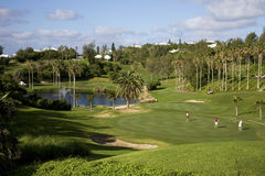 Resort Golf Stock Image
