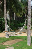 Resort hammock Royalty Free Stock Photography