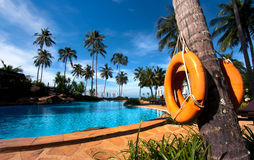 Resort hotel pool. Deckchairs in tropical resort hotel pool Royalty Free Stock Photography