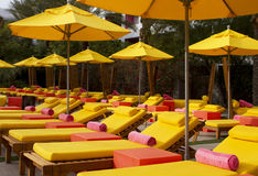 Resort Hotel Swimming and Wading Pool. Very colorful chaise lounges and umbrellas surround a modern desert hotel resort pool Stock Images