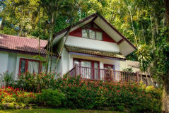 Resort in the jungle. With flower Royalty Free Stock Images
