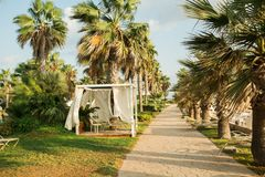 Resort on mediterranean sea, Paphos, Cyprus Royalty Free Stock Photo