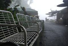 Resort in the mist. Fresh and Oxigen Stock Photography