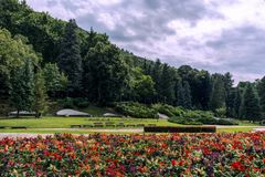 Resort park with beautiful garden and forest with dramatic blue sky. Spa resort park with beautiful garden with red flower and forest with dramatic blue sky stock photo