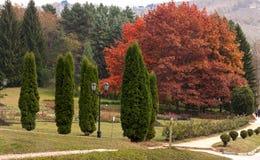 Resort park in Kislovodsk Royalty Free Stock Image