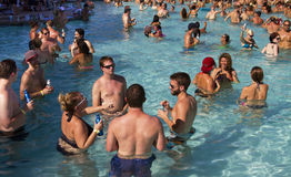 Resort Pool Party Holiday Fun Stock Photos