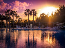 Resort pool at sunset royalty free stock images