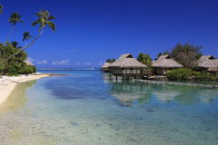 Resort sandy beach in Polynesia Royalty Free Stock Photography