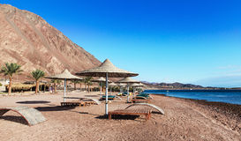 Resort on the shores of the Red Sea Stock Images