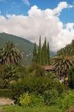 Resort in subtropics. Royalty Free Stock Image