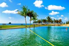 Resort Swimming Pool 1 Stock Image