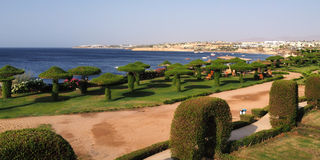 Resort territory and sea. In Egypt (Red sea Stock Image