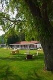 Resort White Lake Stock Photos