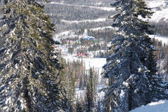 Resort in winter forest Stock Photos