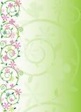 Resorte adornado floral ilustración del vector