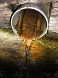 Resorte. Agua actual Fotos de archivo
