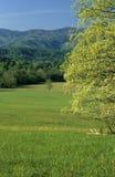 Resorte, campos, montañas Imagen de archivo libre de regalías