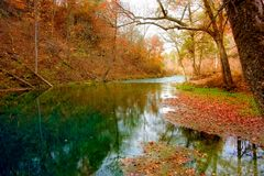 Resorte del otoño en Missouri Fotografía de archivo libre de regalías