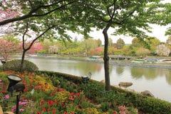 Resorte en Japón Foto de archivo libre de regalías