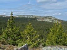Resorte en montañas foto de archivo libre de regalías