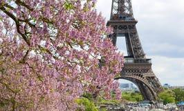 Resorte en París Imagen de archivo