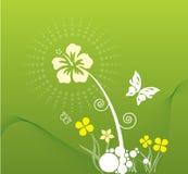 Resorte en verde Imagen de archivo libre de regalías