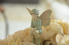 Resorte floreciente Fotos de archivo libres de regalías