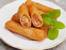 Resorte frito Rolls Foto de archivo libre de regalías