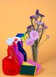 Resorte limpio y fresco Foto de archivo libre de regalías
