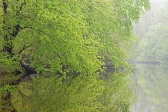 Resorte, río de Kalamazoo Foto de archivo