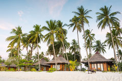 Resorts on the beach at island in Thailand. Resort around with coconut trees on the beach at island in Thailand stock photo